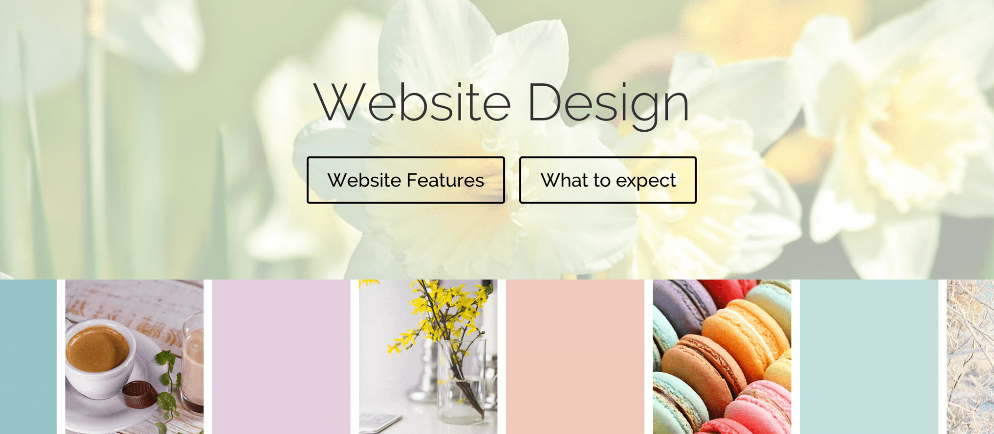 Vireo Media Website Design
