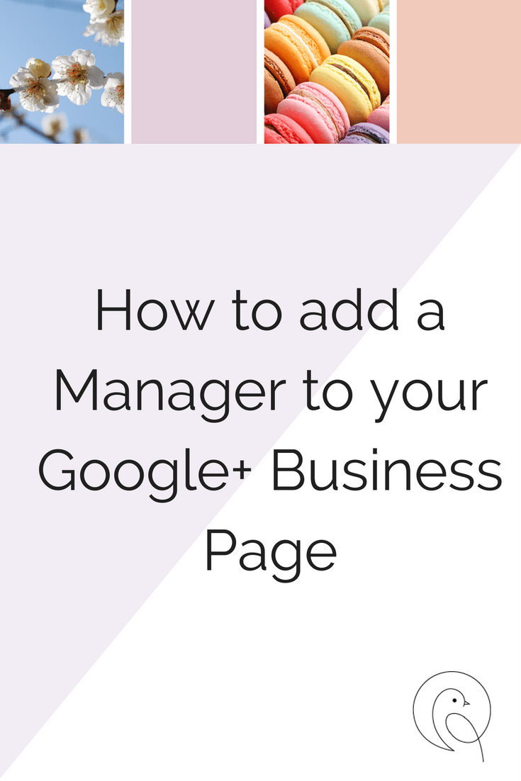 Text on image reads: How to add a manager to your Google+ Business Page