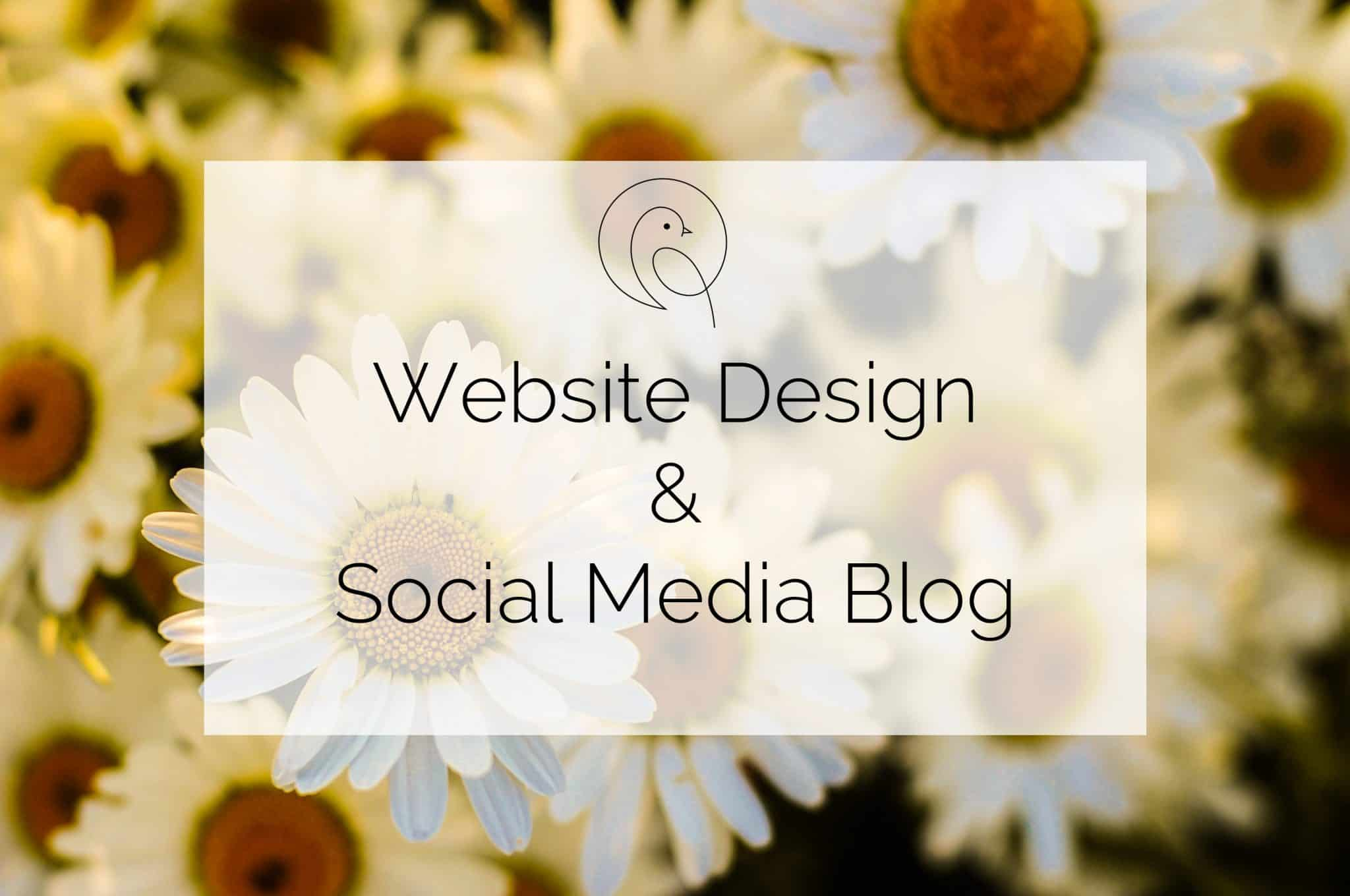 Website Deisgn and Social Media Blog