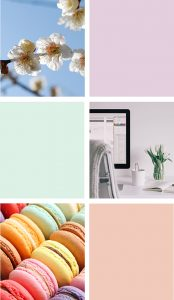 Vireo Media Stacked Colorful branded images