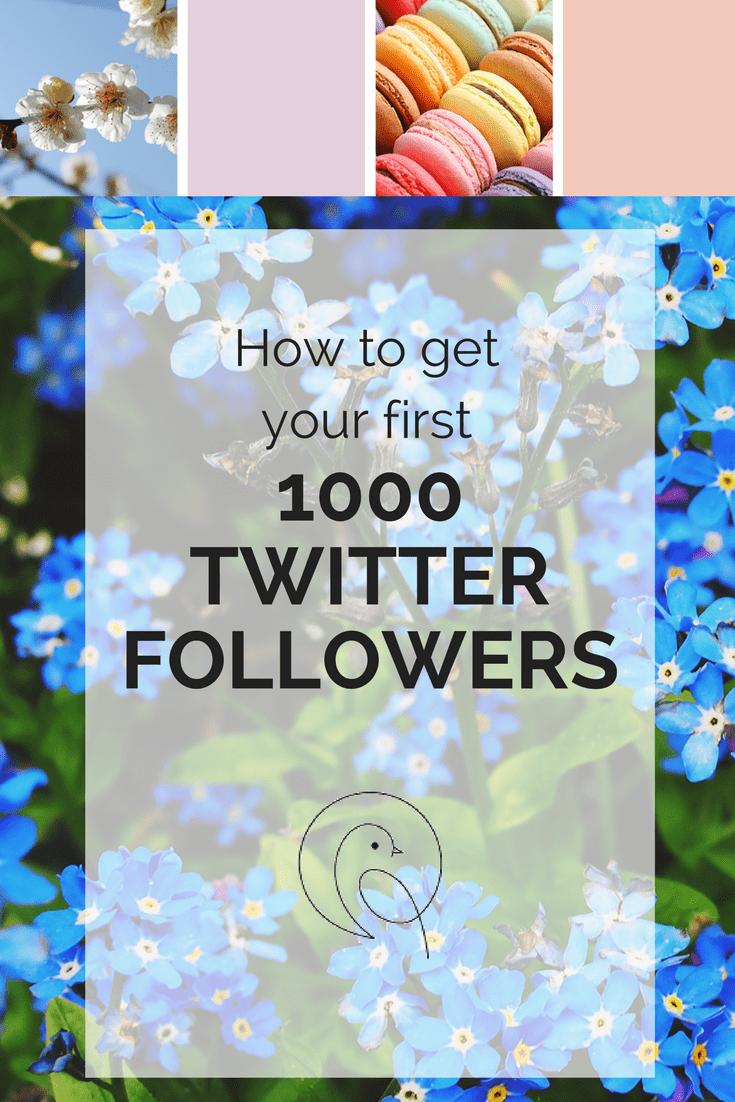 First 1000 Twitter Followers