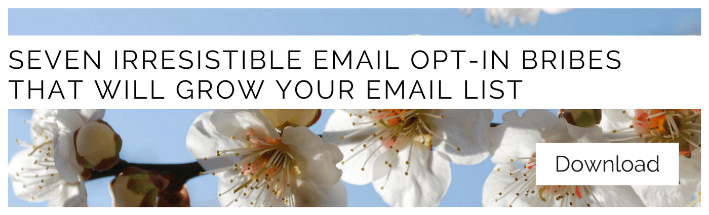 SEVEN IRRESISTIBLE EMAIL OPT-IN BRIBES THAT WILL GROW YOUR EMAIL LIST (1)