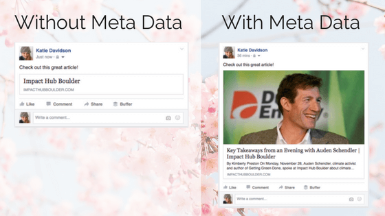 Social Media Meta Data Course – WordPress