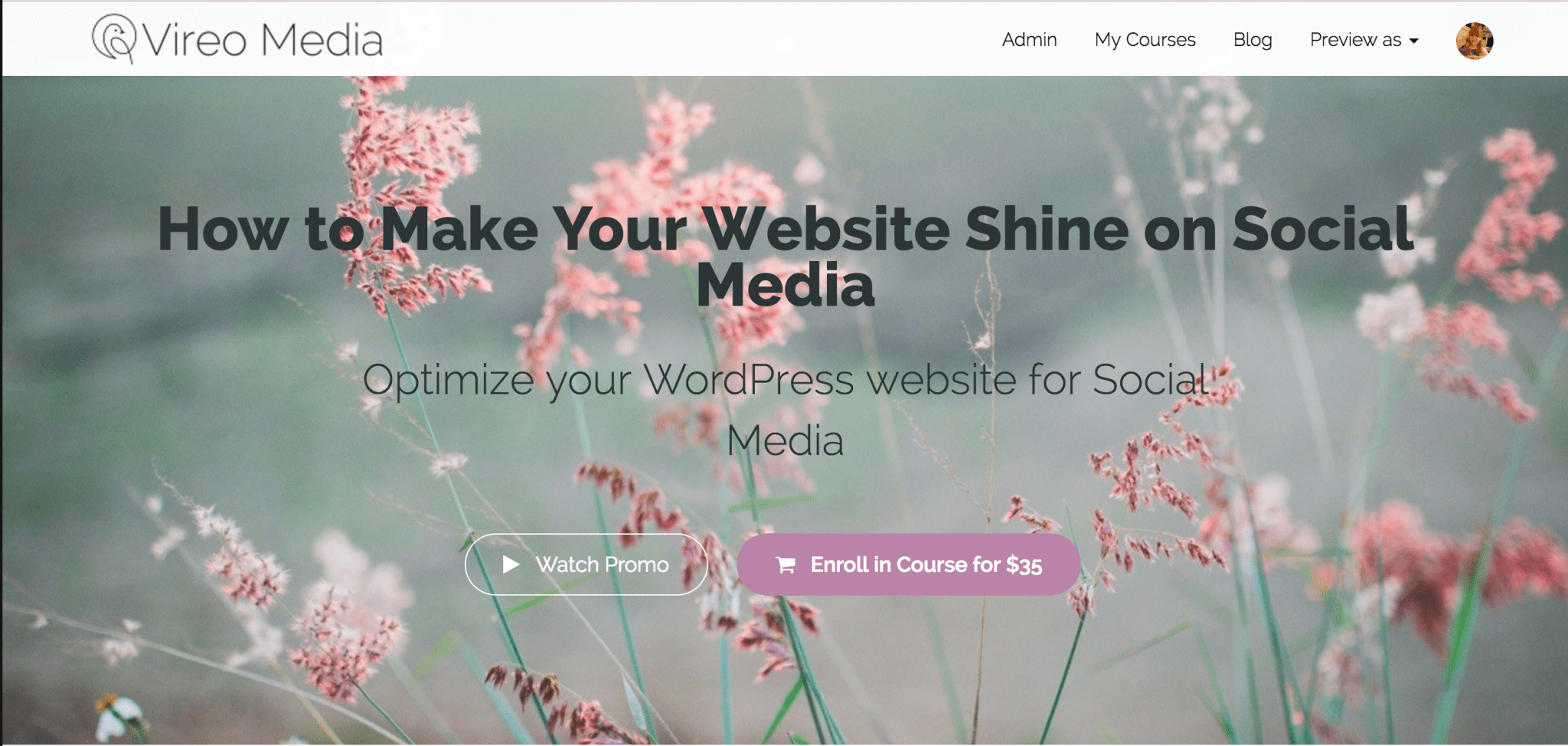 Course: How to Make Your Website Shine on Social Media